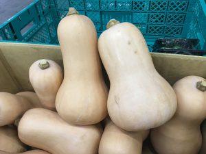 バターナッツ 横浜市場