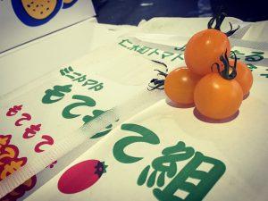 小樽市仁木町ミニトマト