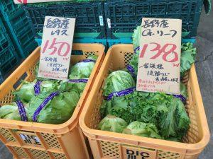 横浜中央卸売市場 ぴこ おすすめ