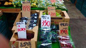 横浜中央卸売市場ぴこちゃん