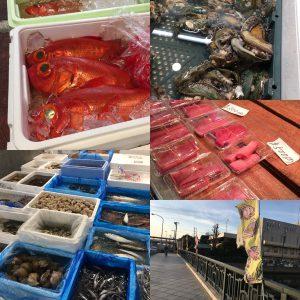 横浜中央卸売市場魚市場