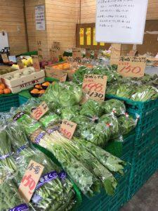 横浜中央卸売市場横ぴこちゃん今日の野菜