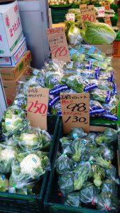 横浜中央卸売市場横のぴこ