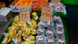 横浜中央卸売市場横やさいのぴこちゃん