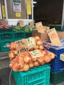 横浜中央卸売市場横やさいのぴこ新玉葱