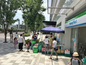 横浜中央卸売市場横やさいのぴこ