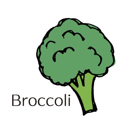 冬の旬野菜・ブロッコリー♪