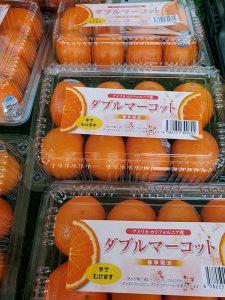 ぴこ市場店・輸入柑橘も春が旬🎶