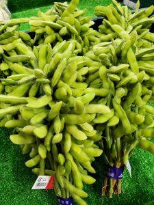 ぴこ市場店・今年も素晴らしい枝豆きたよ♪