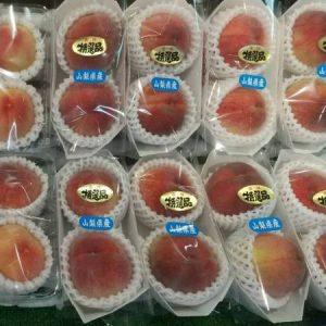ぴこ青葉店・ついに桃の季節♪日川白鳳